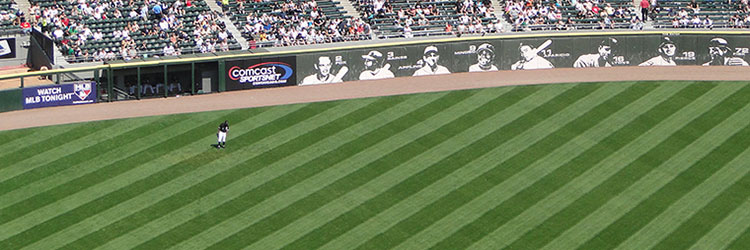 Outfield grass at U.S. Cellular Field