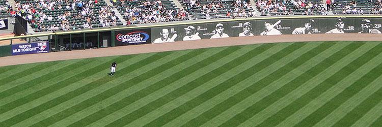 Major League Baseball Ballpark Grass and Turf