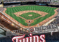 Target Field with Twins logo puzzle
