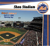 New York Mets ballpark jigsaw puzzle