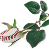 Horizontal baseball rose